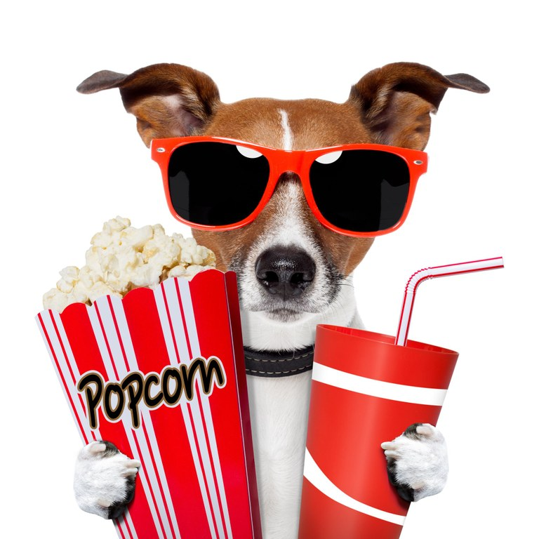 Movie dog popcorn soda