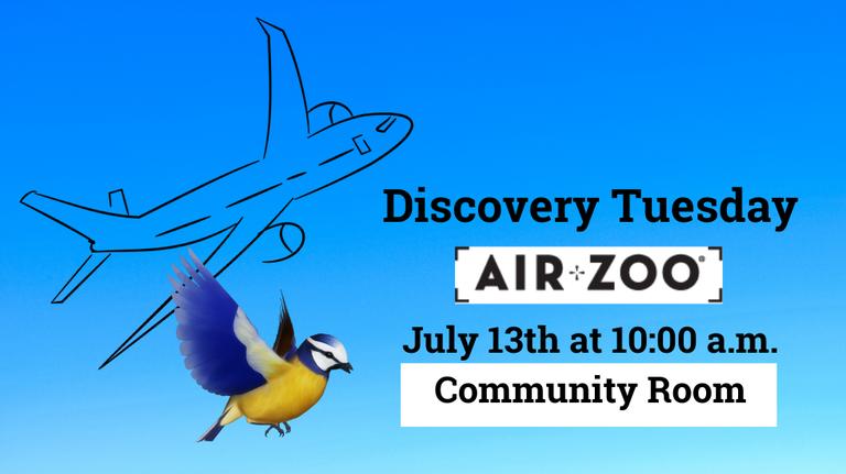 Air Zoo slide